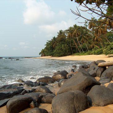 On the Cameroon Coast